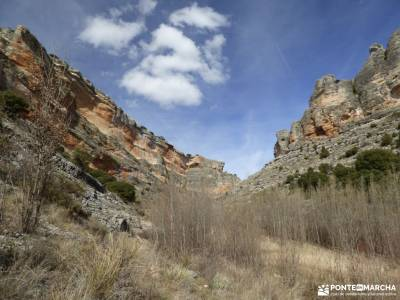 Río Salado-Salinas Imón-El Atance;cruz verde madrid cerezos valle del jerte la pedriza del manzana